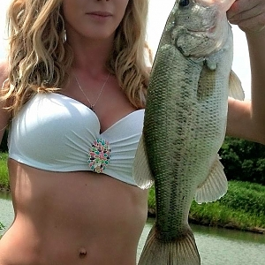 Blonde Bass Catcher